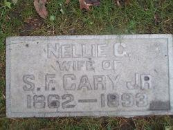Nellie <i>Goodrich</i> Cary