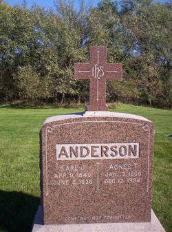 Agnes T. <i>Hakel</i> Anderson