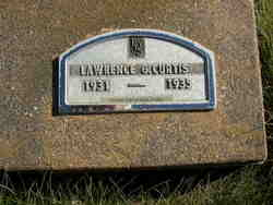 Lawrence G Curtis
