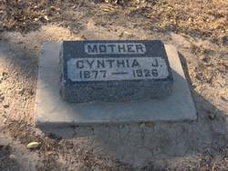 Cynthia Jane <i>Kirk</i> Lowe