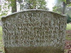 John Newton Newt Crosthwait, Sr