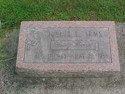 Julius E Arms