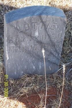 Charlotte Lottie Stoddard
