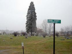 Gurn Springs Cemetery