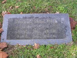 Sarah E Sally <i>Malone</i> Hawkins