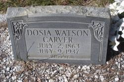 Dosia <i>Watson</i> Carver