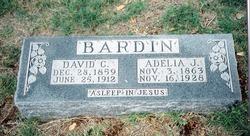 Adelia Jane <i>Elliott</i> Bardin