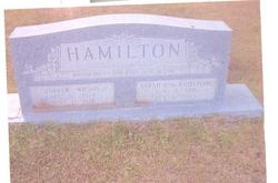 Andrew Wilson Hamilton