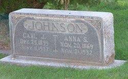 Anna S <i>Nelson</i> Johnson