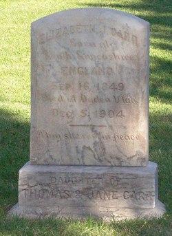 Elizabeth J Carr