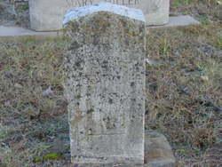Nellie Alexander