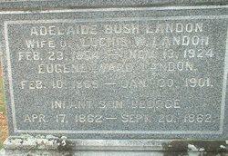Adelaide <i>Bush</i> Landon