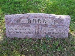 Mary Ann <i>Lodge</i> Budd