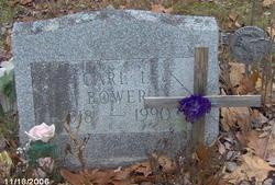 Carl L. Bower
