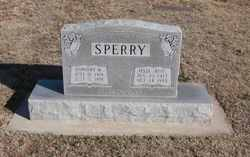 Dorothy Mae <i>Milam</i> Sperry