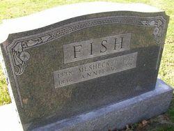 Anna W. Annie <i>Pugh</i> Fish