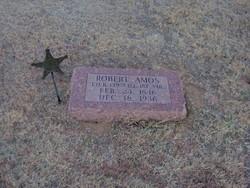 Robert Amos