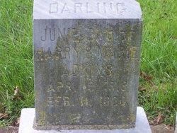 Junie Adkins