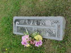 Ada D <i>Cornwall</i> Adams