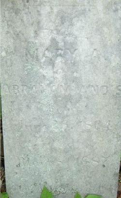 Mary Polly <i>Moor(e)</i> Andis