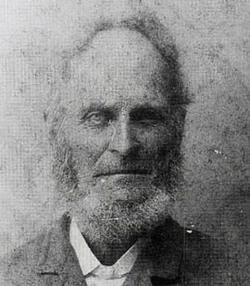Rev William Vermillion Shannon
