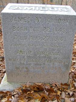 Annie Virginia Amidon