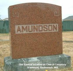 Lloyd M Amundson