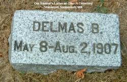 Delmas B Lien