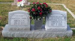 Anacleto Andy Amescua
