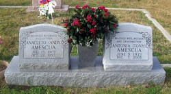 Antonia Tony Amescua