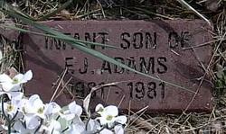 INFANT (Son) Adams