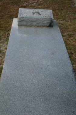 Ollivet Virginia Ollie <i>grant</i> Smith Adams