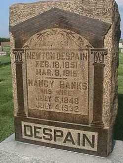 Nancy <i>Hanks</i> Despain