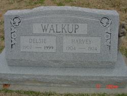 Harvey Walkup
