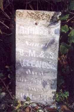 Archer C. Allender