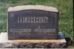 Lydia Ann <i>Denton</i> Burris