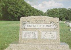 Theresa Brueckner