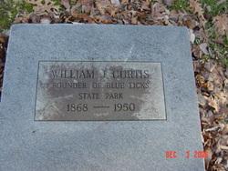 William Job Curtis