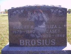 Mary E <i>Casey</i> Brosius