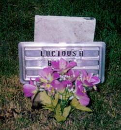 Lucious Babbs