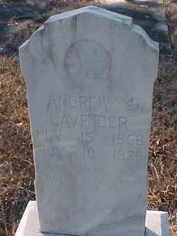 Andrew J. Lavender