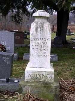 Leonard C Audino