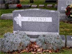 James B Audino