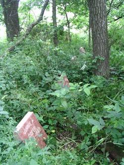 Cofer Cemetery