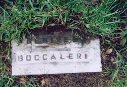 Desiree N. Boccaleri