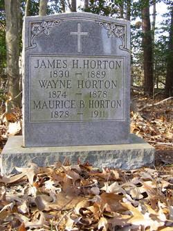 Wayne Horton