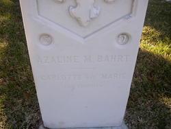 Carlotte Bahrt