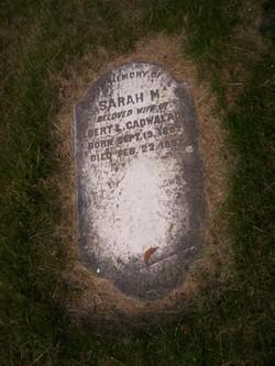 Sarah M Cadwalader