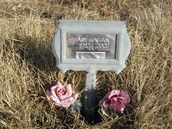 Mary Ann <i>Needham</i> Hagan