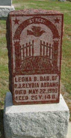 Leona B Abrams